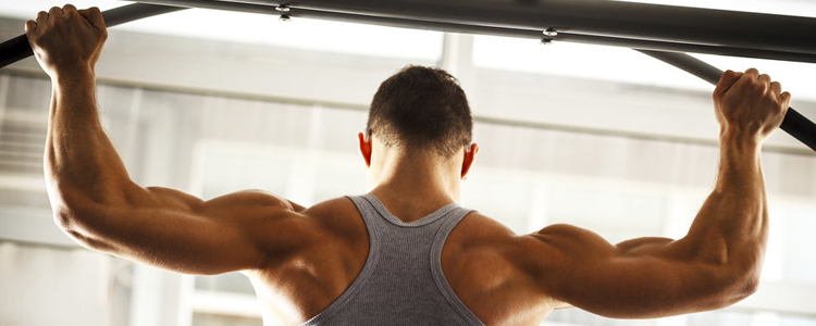 Greatest Bodybuilding Supplements for Men